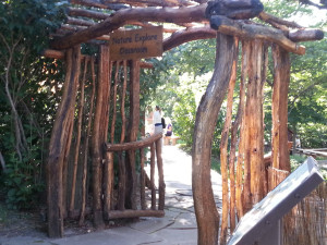 Nature Explore outdoor classroom entry made of tree trunks and limbs